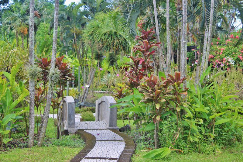 Bali0123