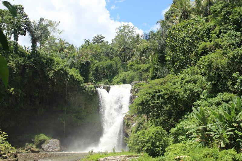 Bali000