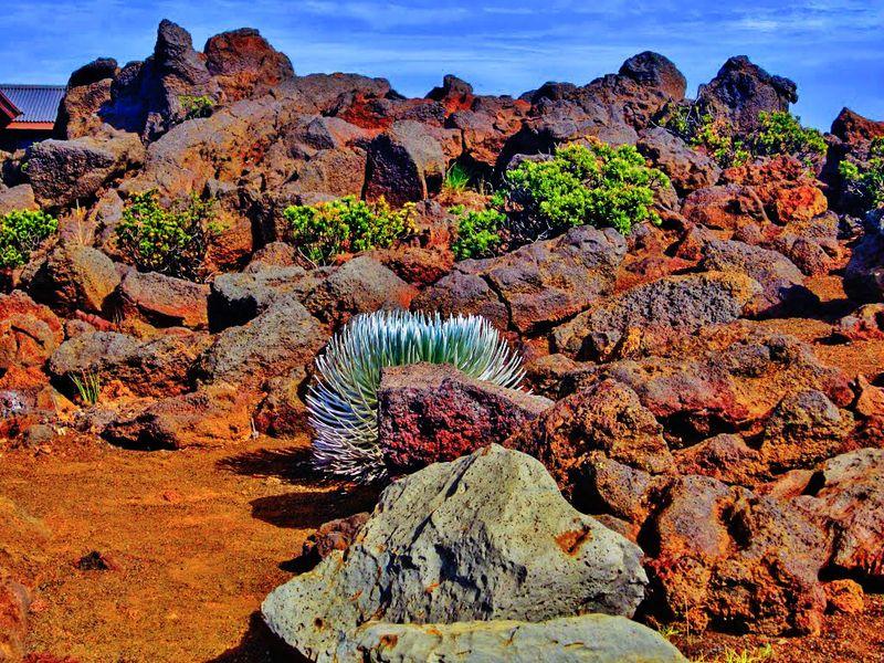 Mauiiii2222_tonemapped