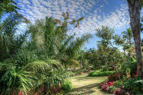 Botanical 1-03611