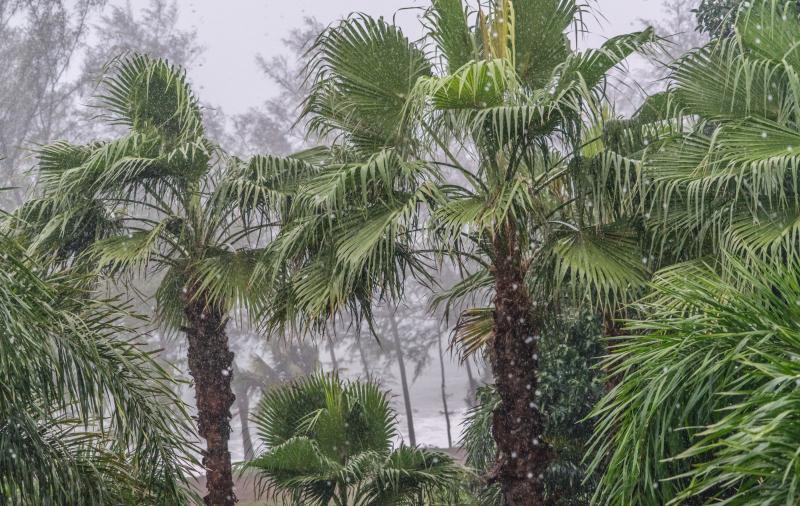 Phuket-1449393
