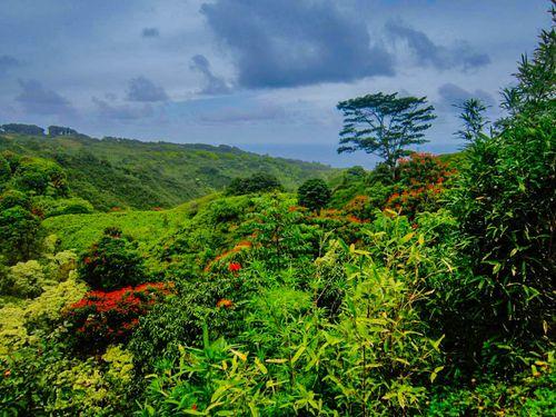 Maui6666_tonemapped