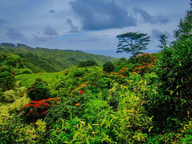 Mauiii4567_tonemapped