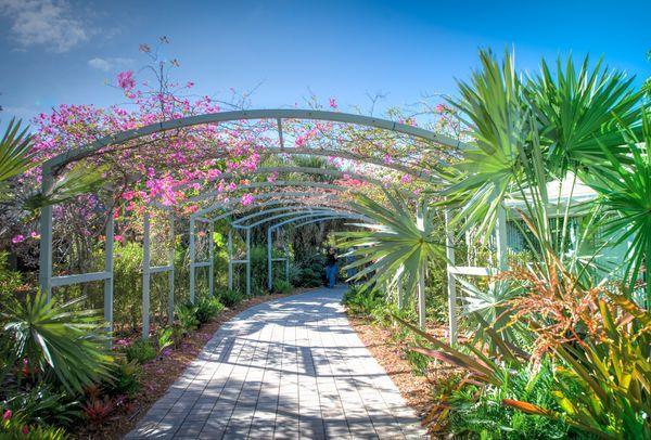 Naples Botanical Gardens Wandering And Searching Yogi